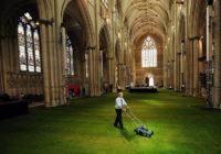 Интериорно озеленяване за дома и офиса